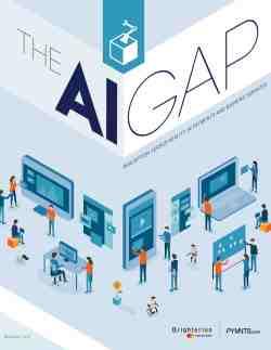 The AI Gap